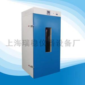 DHG-9920A 250度立式鼓风干燥箱