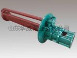 熔盐液下泵 GY30-250