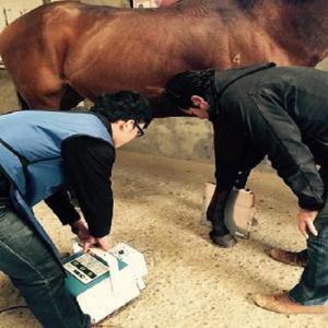 便携式动物DR数字系统