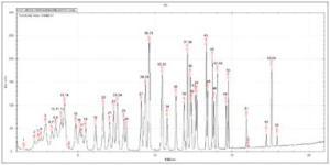 东莞有货Mate 11便携式气相色谱/质谱联用仪(GC/MS)
